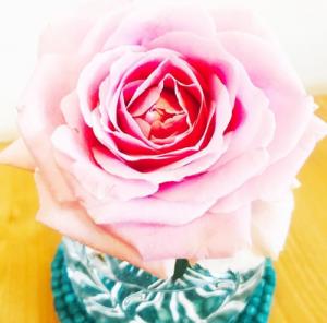 中島健人 平祐奈匂わせ インスタ ピンクのバラ